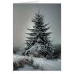 Majestic Winter Card