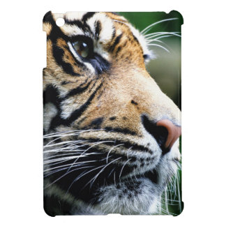 Majesty iPad Mini Covers