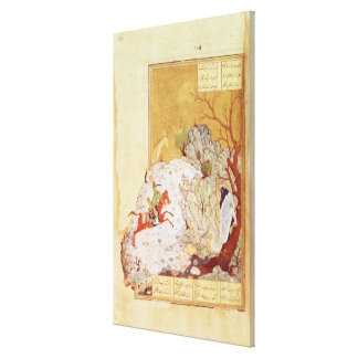 Majnun in the Desert Canvas Print