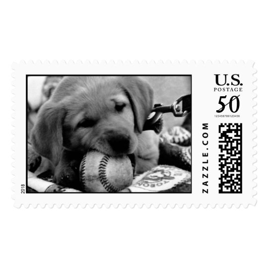 Major League Puppy - Postage