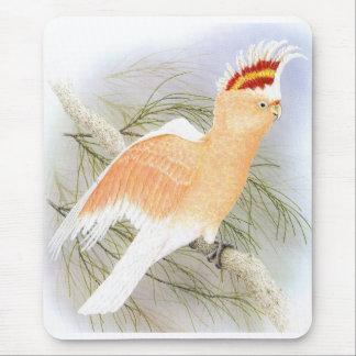 Major Mitchell's Cockatoo - Cacatua leadbeater Mouse Pad