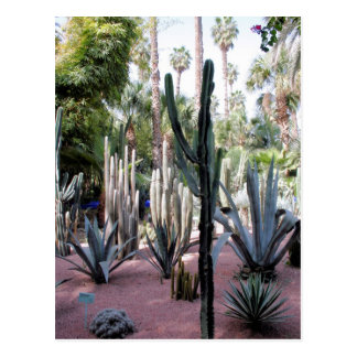 majorelle exotic plants postcard
