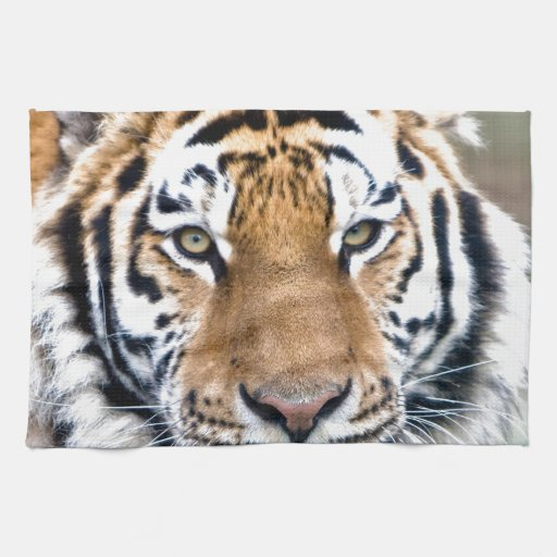Makari Tiger Confidence peace and power Towel