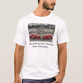 Make a left at exit 14  & go back 150 years. T-Shirt