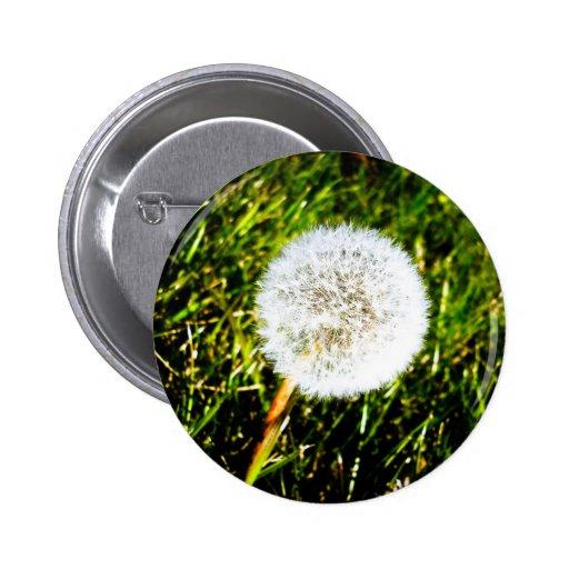 Make a Wish 02 Button