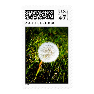 Make a Wish 02 Postage
