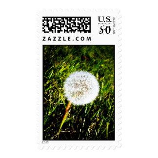 Make a Wish 02 Postage