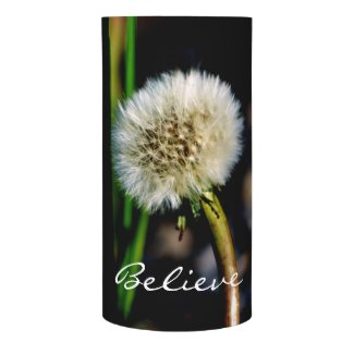 Make a Wish, Believe, Dandelion Wrapped LED Candle