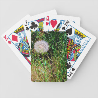 """Make a Wish"" collection Bicycle Playing Cards"
