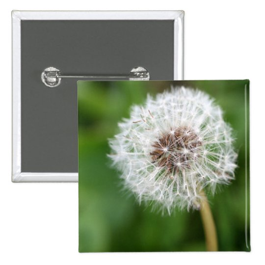 Make A Wish! Dandelion Pinback Button