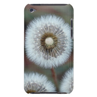 Make a Wish iPod Touch Case-Mate Case
