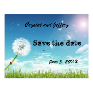 Make a Wish Wedding Save the Date Postcards