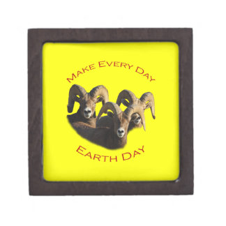 Make Every Day Earth Day Gift Box