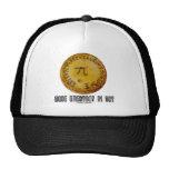 Make Everyday Pi Day (Mathematics Pi / Pie Humor) Trucker Hat