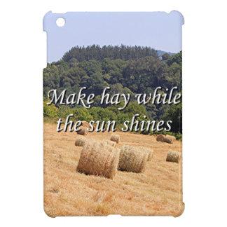 Make hay while the sun shines hay bales,Spain iPad Mini Cover