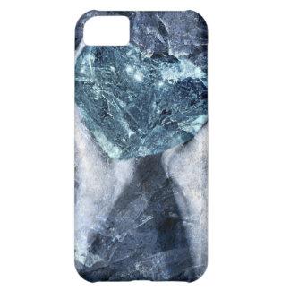 Make Me Feel iPhone 5C Case