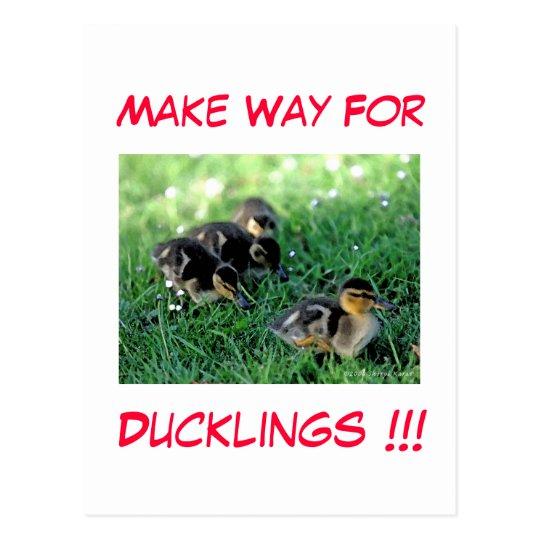 Make Way For Ducklings!!! Postcard