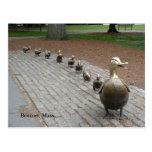 Make Way for Ducklings! Postcard