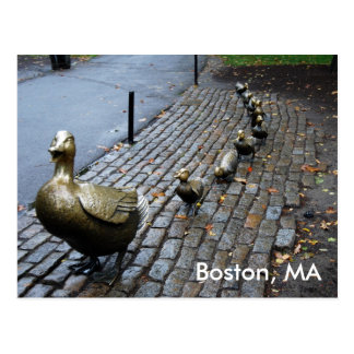 Make Way For The Ducklings Postcard