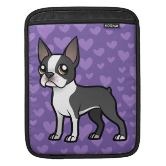 Make Your Own Cartoon Pet Sleeve For iPads