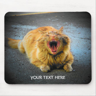make your own cat meme mouse pad