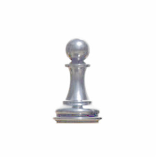Make your own chess set Silver Pawn Standing Photo Sculpture