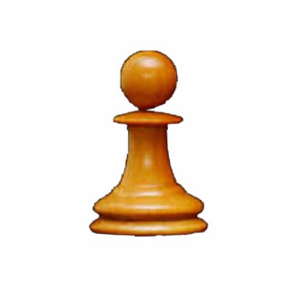 Make your own chess set White Pawn Standing Photo Sculpture
