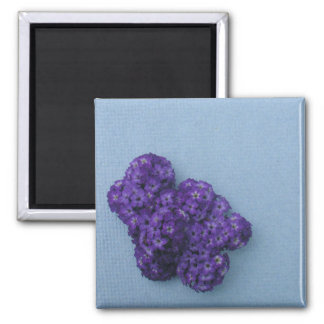Make Your Own Magnet- Heliotrope 2 Inch Square Magnet