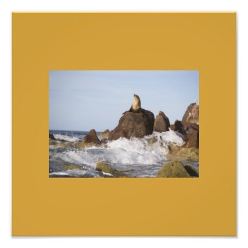 Make Your Own Photo Prints--ocean Scene by creativeconceptss at Zazzle