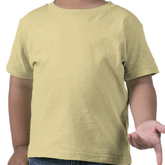 Make Your Own Toddler Tshirt