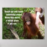 Making Friends Orangutan Wildlife Poster