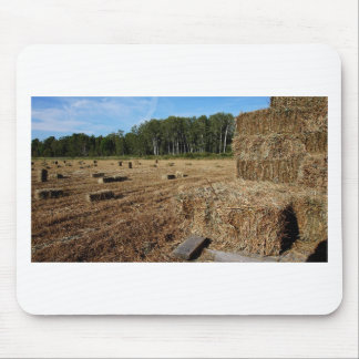 Making Hay While the Sun Shines Mouse Pad
