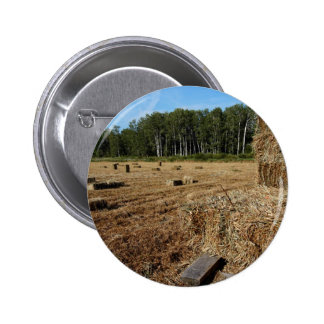 Making Hay While the Sun Shines Pinback Button