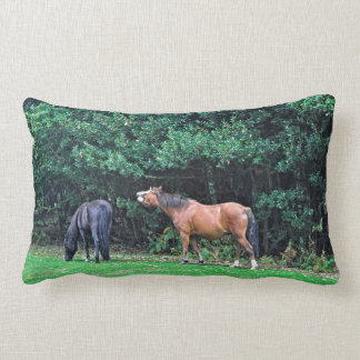 Mala foto del caballo de la actitud del potro cojin