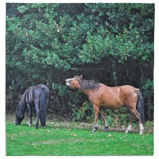 Mala foto del caballo de la actitud del potro dive servilletas imprimidas