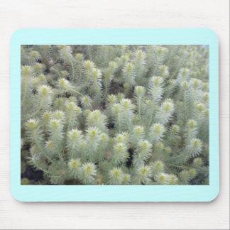 Mala hierba blanca 1 tapete de ratones