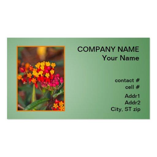 mala hierba de mariposa del escarlata tarjetas de visita