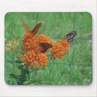 Mala hierba de mariposa mouse pad