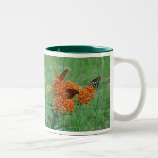 Mala hierba de mariposa taza