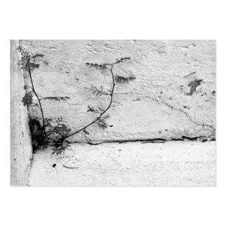 Mala hierba en tarjeta de visita de los pasos