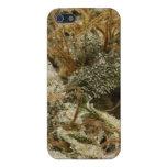 Mala hierba HÚMEDA iPhone 5 Carcasa