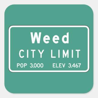 Mala hierba, marcador del camino, California, los Pegatina Cuadrada