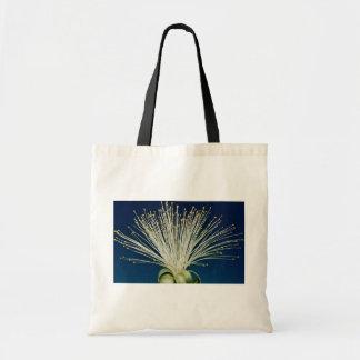 Malabar chestnut pachira aquatica bag
