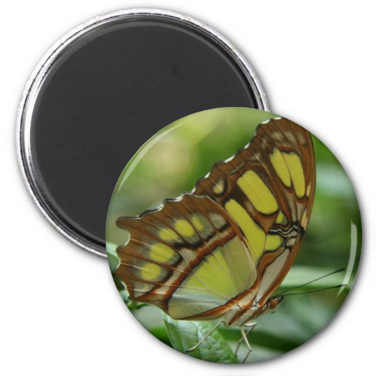 Malachite Butterfly Round Magnet