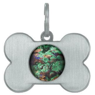Malachite Lapis Azurite Gems Gemology Rock Pet Name Tag