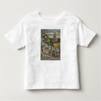 Malad Gorge State Park, Idaho Toddler T-shirt