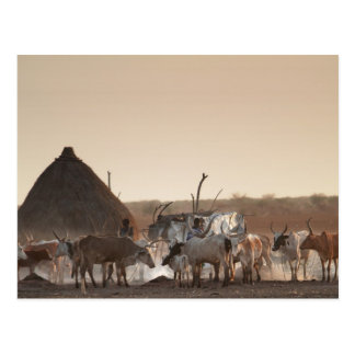 Malakal, village of Dinka ethnic group Postcard