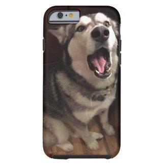 Malamute de Alaska con la fotografía abierta de la Funda De iPhone 6 Tough
