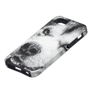 MALAMUTE DE ALASKA iPhone 5 Case-Mate COBERTURAS