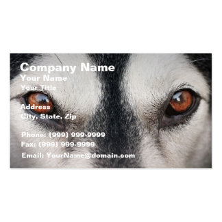 Malamute Dog Brown Eyes Business Card